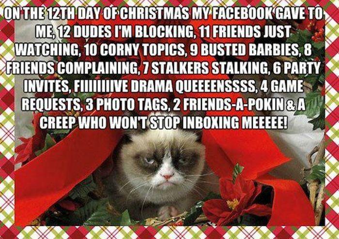 grumpy cat meme christmas tree - photo #16