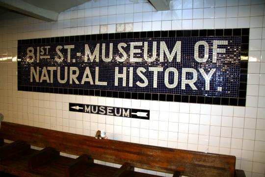 1 museum arrival