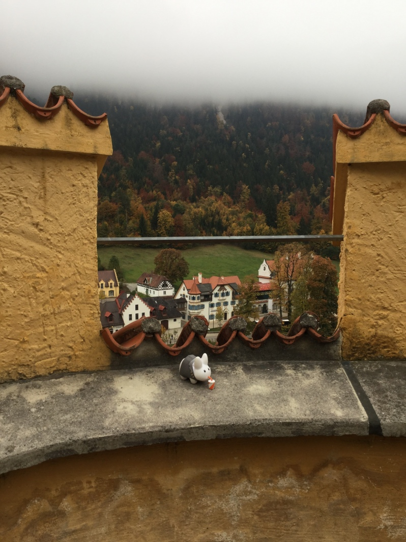 Füssen-Hohenschwangau Castle 11