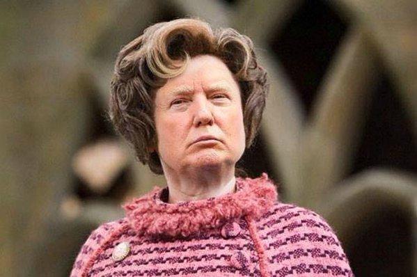 Trump Umbridge